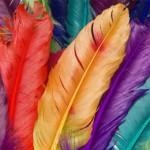 Filatelia a ritmo di samba in Brasile