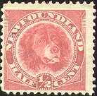 Francobollo cane Terranova