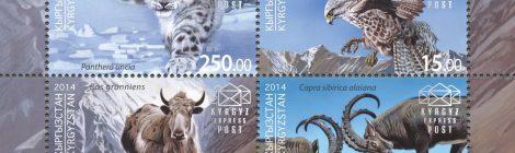 Perché il Kyrgyzstan ci riguarda